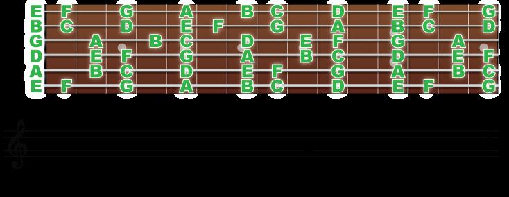 全ての弦上の音の配置